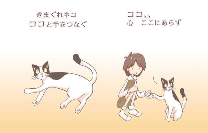 猫と手をつなぐとわかること