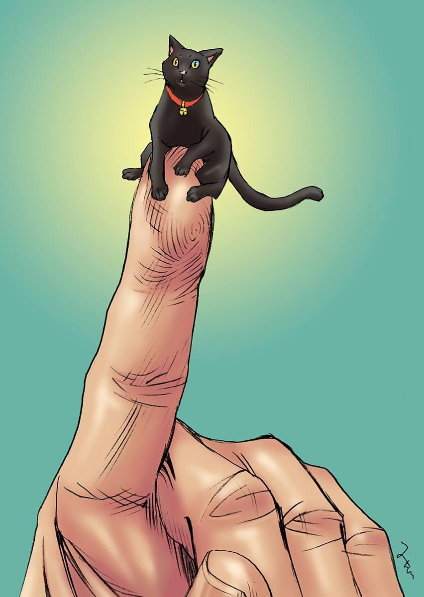 人差し指に乗る黒猫