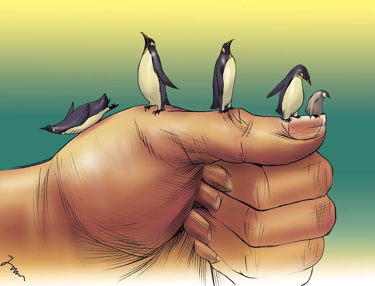 手に乗る皇帝ペンギンたち