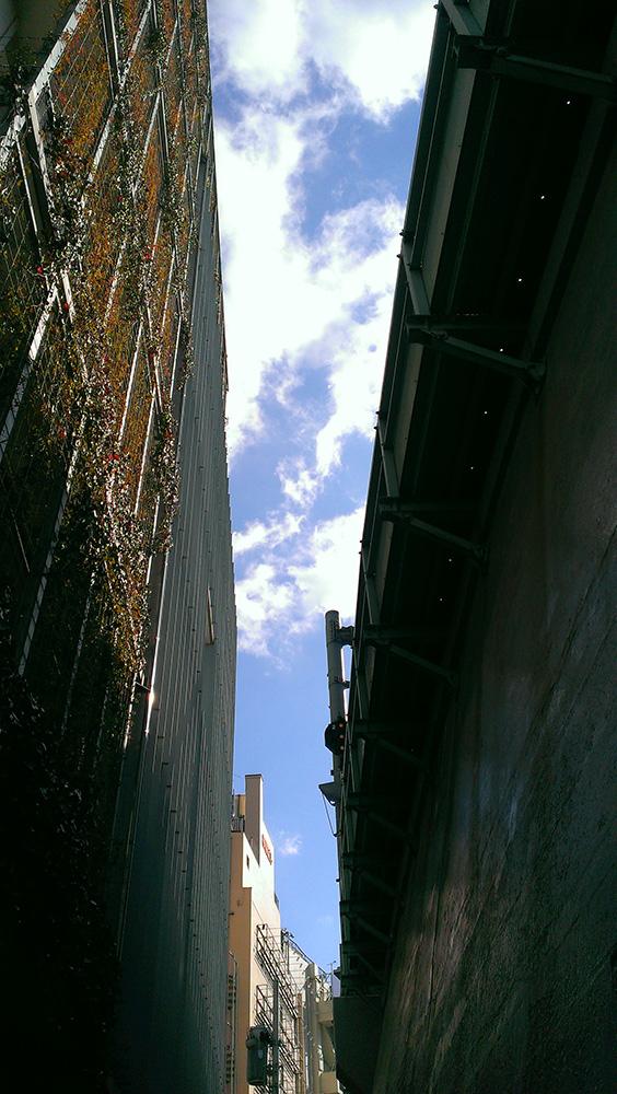 高田馬場の路地から空を眺めた