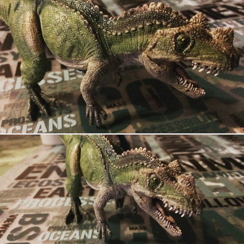 ケラトサウルス01