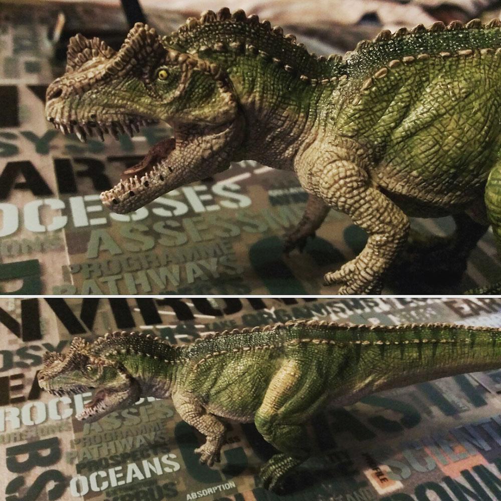 ケラトサウルス02